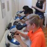 Vzdělávací exkurze v environmentálním centru - ZŠ a MŠ Všeruby